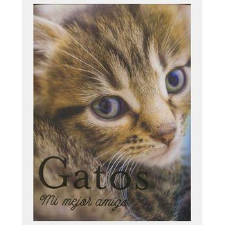 gatos-mi-mejor-amigo-9786075322018