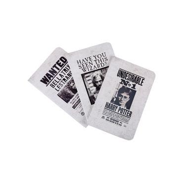set-de-agendas-harry-potter-wanted-posters-9781683833574