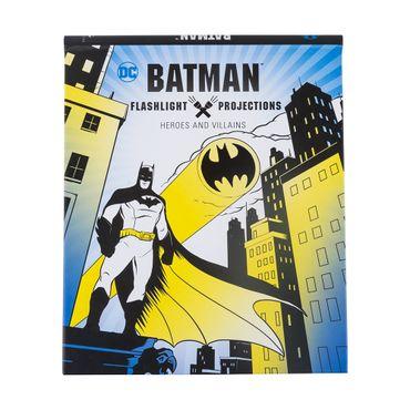 batman-flashlight-projections-9781683834441