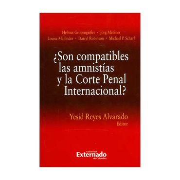 -son-compatibles-las-amnistias-y-la-corte-penal-internacional--9789587900149