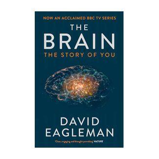 the-brain-9781782116615