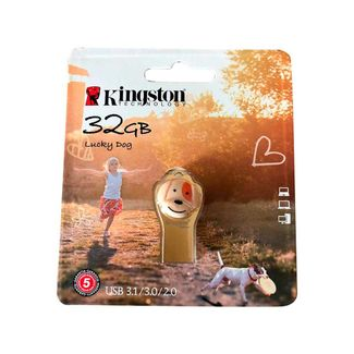 memoria-kingston-de-32-gb-lucky-dog-740617274493