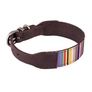 collar-de-perro-3-1-x-44-5-cm-lineas-7701016627054