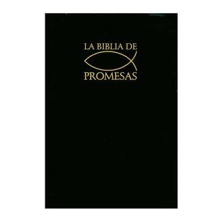 la-biblia-de-promesas-9780789906656