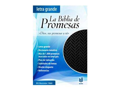 la-biblia-de-promesas-9780789924452