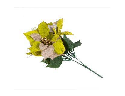 poinsettia-36-cm-verde-manzana-borde-dorado-7701016719605