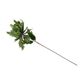 poinsettia-81-cm-verde-oscura-7701016719254