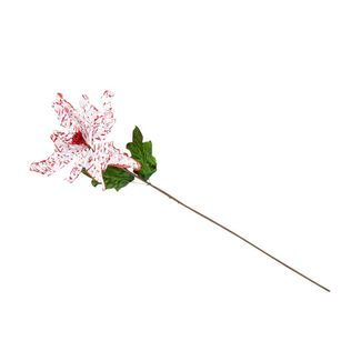 poinsettia-78-cm-blanco-manchas-roja-7701016720359