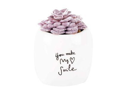 planta-artificial-morada-you-make-my-smaile-9-cm-7701016762533