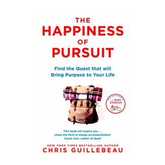 the-happiness-of-pursuit-9781509814404