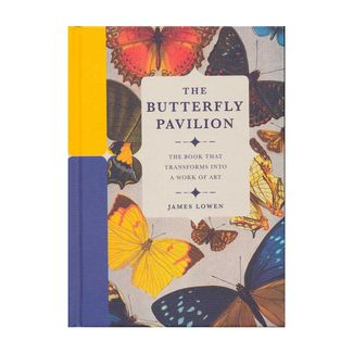 the-butterfly-pavilion-9780233005591