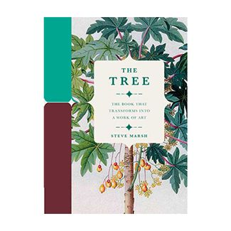 the-tree-9780233005614