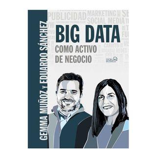 big-data-como-activo-de-negocio-9788441541498