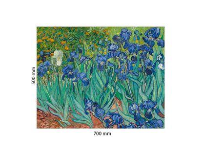 rompecabezas-1000-piezas-iris-3800232050449