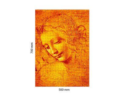 rompecabezas-1000-piezas-leonardo-da-vinci-viso-di-giovane-fanciulla-1490-3800232051019