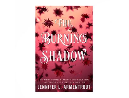 the-burning-shadow-9781250258069