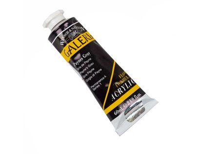 acrilico-gris-payne-60-ml-94376899450
