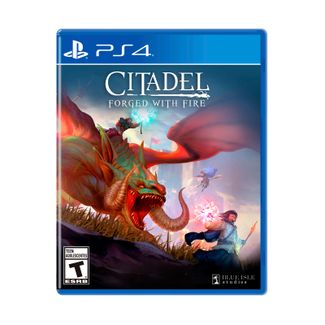juego-citadel-forget-with-fire-para-ps4-884095196035