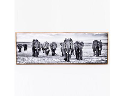 cuadro-diseno-elefantes-7701016884549