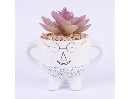planta-artificial-diseno-cara-con-anteojos-7701016990318