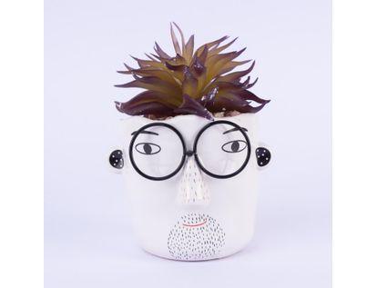 planta-artificial-diseno-cara-con-anteojos-7701016990349