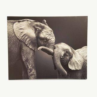 cuadro-canvas-39-7-x-49-8-cm-mama-hijo-elefante-blanco-negro-7701016827843