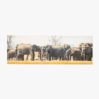 cuadro-canvas-30-x-89-9-cm-manada-de-elefantes-7701018027913