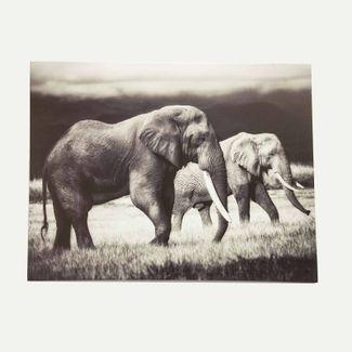 cuadro-canvas-39-7-x-49-8-cm-elefantes-blanco-gris-7701018827858