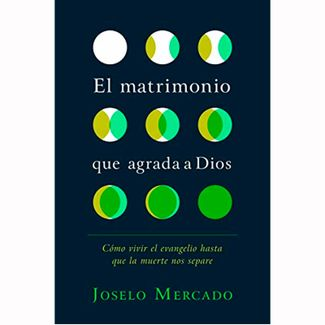 el-matrimonio-que-agrada-a-dios-9781535945097