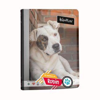 cuaderno-a-cuadros-cosido-de-100-hojas-diseno-mascotas-en-adopcion-robin-7702124492756