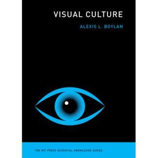 visual-culture-9780262539364