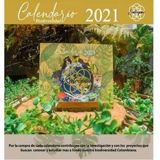 calendario-del-2021-biodiversidad-ilustrada-610511