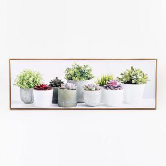 cuadro-42-x-122-cm-materas-con-plantas-suculentas-615513