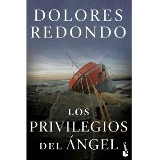 los-privilegios-del-angel-9789584293527