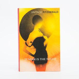 tender-is-the-night-9780099541523